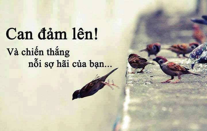 can-dam-len-2
